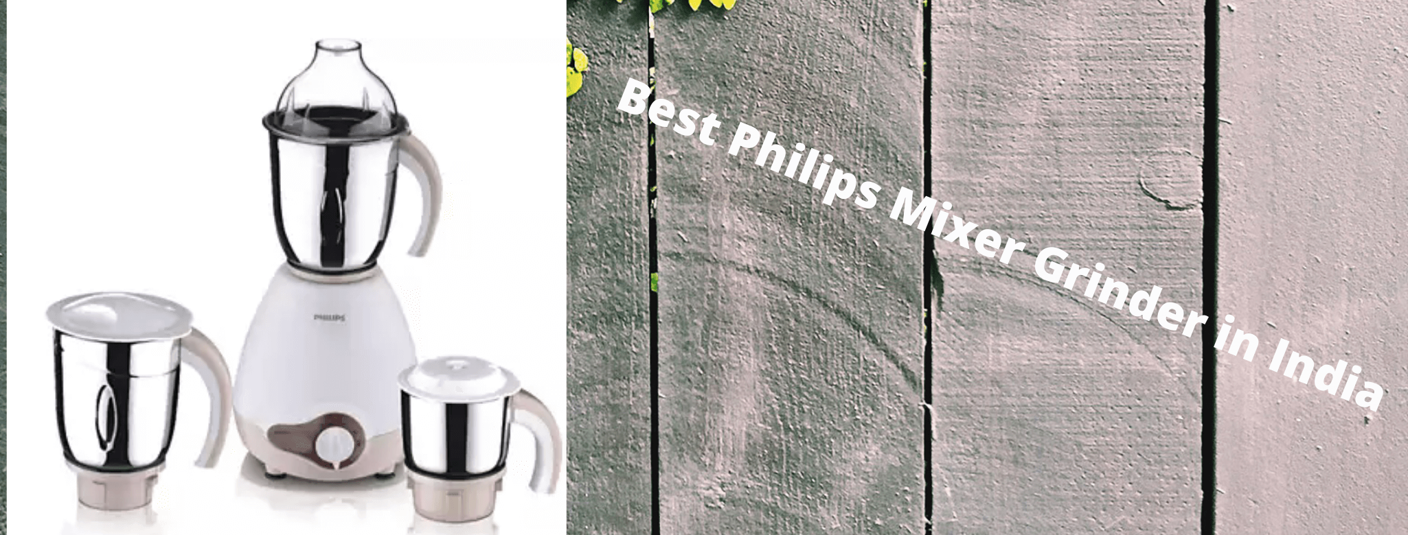 Best Philips Mixer Grinder in India